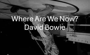 Netikėtą singlą išleidęs D. Bowie po daugiau nei dviejų dešimtmečių sugrįžo į britų Top 10-uką