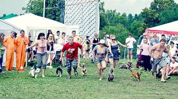 """Festivalyje """"Galapagai"""" įvyks tradicinės šunų lenktynės"""